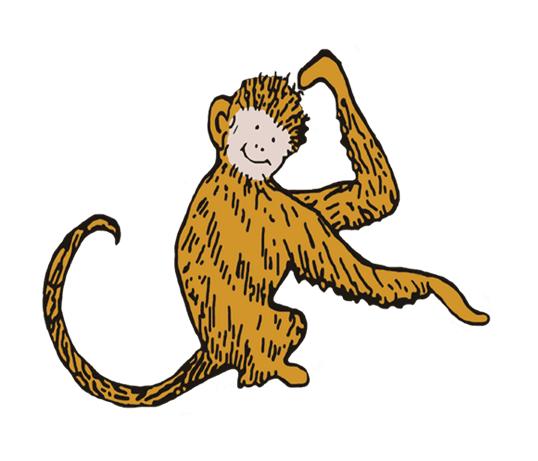 Monkey Lucas