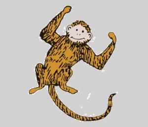 Monkey Aiden
