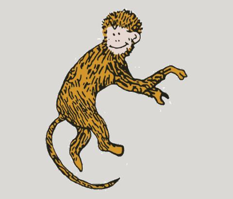 Monkey Caleb
