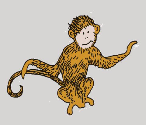 Monkey Lily