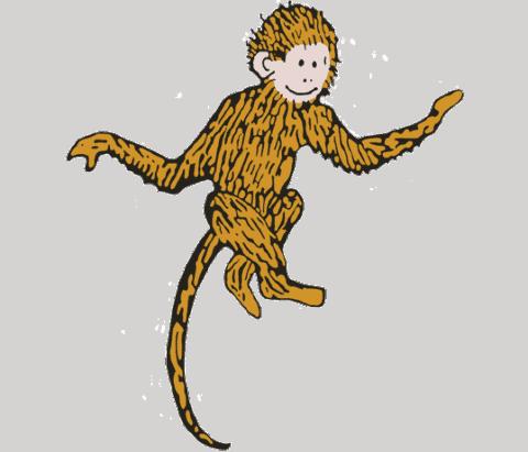 Monkey Regina